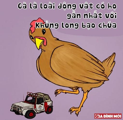 10 su that thu vi co the ban chua biet ve cac con vat-Hinh-4