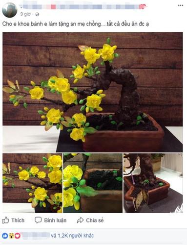 "Ban se ""soc"" khi biet cay mai bonsai nay thuc su la gi-Hinh-3"