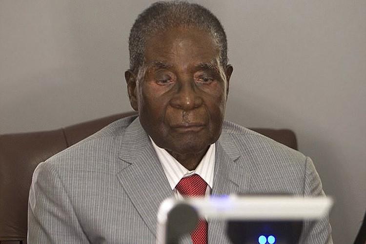 Con trai ba Grace Mugabe tau xe dat tien giua luc Zimbabwe vo no-Hinh-10
