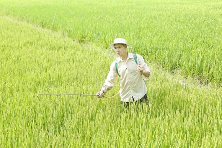 Cuoc song trong nha vuon 3.000 met vuong cua Minh Luan-Hinh-5