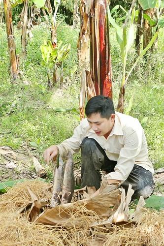 Cuoc song trong nha vuon 3.000 met vuong cua Minh Luan-Hinh-7