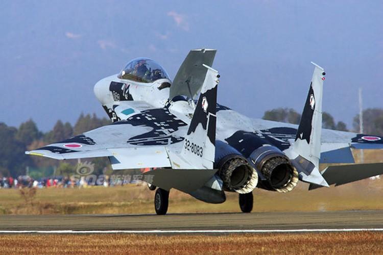 Loe loet dan tiem kich F-15 cua Nhat Ban-Hinh-10