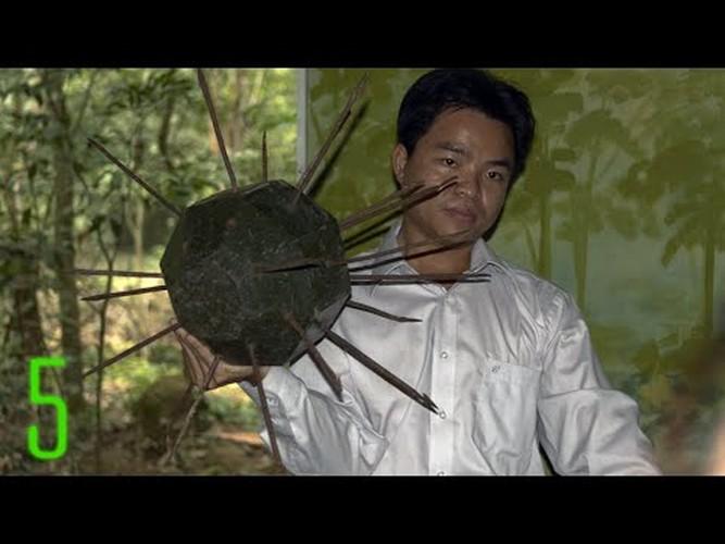 Soi nhung loai bay o Viet Nam khien linh My khoc thet-Hinh-9