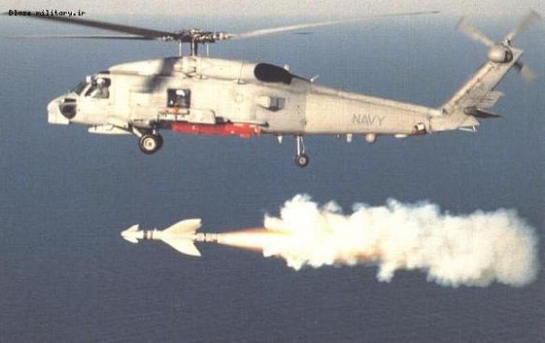 Ky la ten lua chong ham AGM-119 cua My-Nauy-Hinh-5