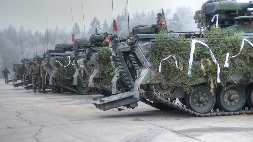 Bo binh co gioi: Vu khi uu viet cua Duc trong CTTG 2-Hinh-13