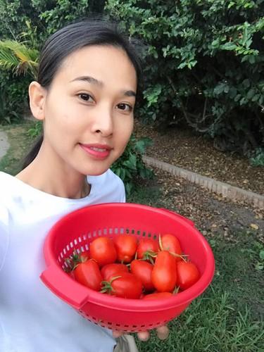 Khu vuon day ap hoa trai trong biet thu cua Thanh Thao, Quang Le o My-Hinh-8