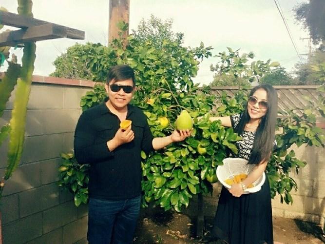 Khu vuon day ap hoa trai trong biet thu cua Thanh Thao, Quang Le o My