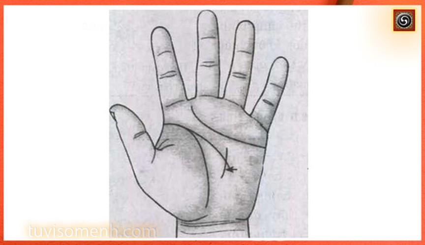 7 tuong ban tay cua dan ba e chong e cho-Hinh-5