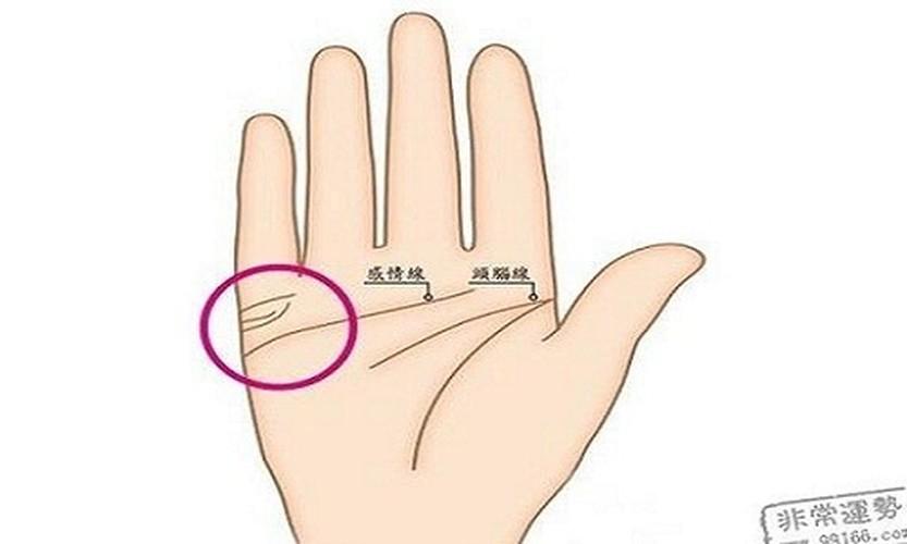 Chi em nao co duong chi tay nay, at lay duoc hao han-Hinh-6