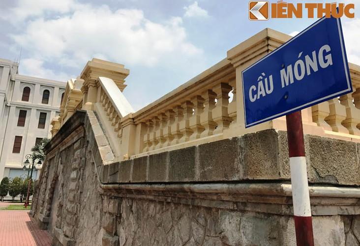 "Can canh vet nut ""khung"" tren cay cau tram tuoi o Sai Gon-Hinh-2"