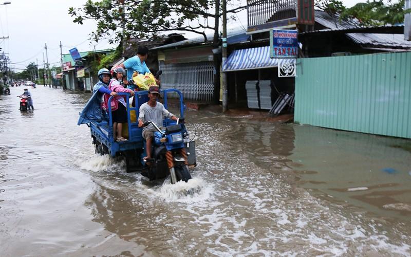 Anh: Nguoi dan TPHCM khon don vi trieu cuong dang cao-Hinh-11