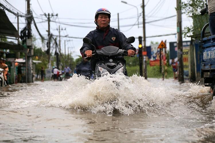 Anh: Nguoi dan TPHCM khon don vi trieu cuong dang cao-Hinh-4