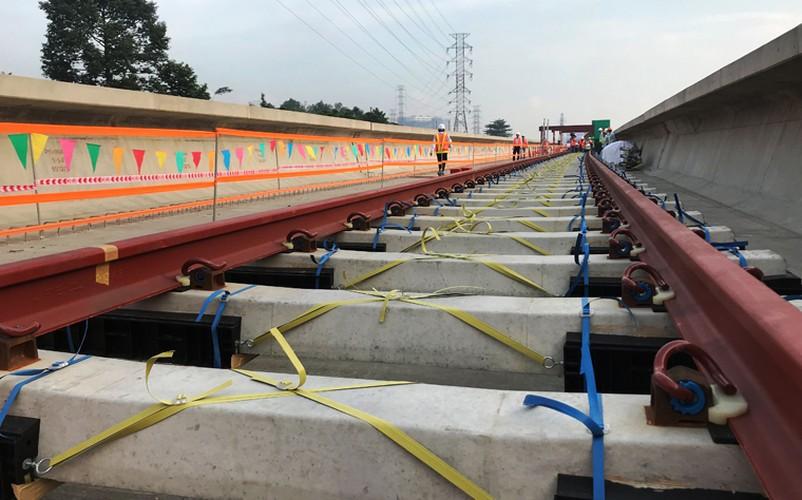 Can canh doan duong ray dau tien tren tuyen Metro Ben Thanh - Suoi Tien-Hinh-8