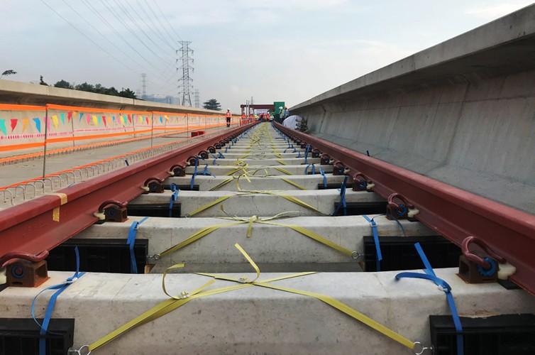 Can canh doan duong ray dau tien tren tuyen Metro Ben Thanh - Suoi Tien-Hinh-9