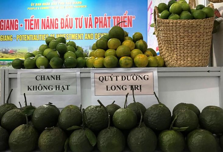 "Loat san vat khap tinh thanh ""khoe sac"" tai APEC 2017-Hinh-18"