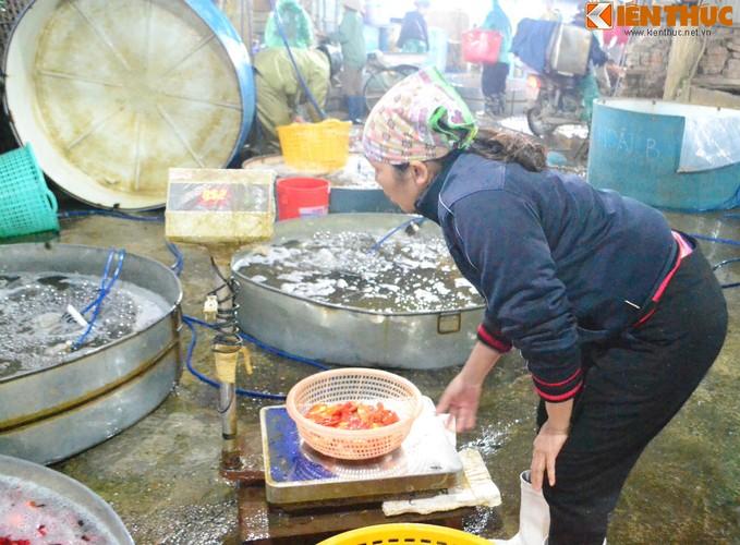 Cho ca lon nhat Ha Noi tap nap truoc ngay cung ong Cong ong Tao-Hinh-10