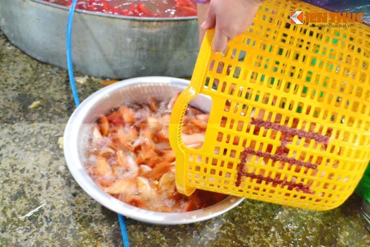 Cho ca lon nhat Ha Noi tap nap truoc ngay cung ong Cong ong Tao-Hinh-4