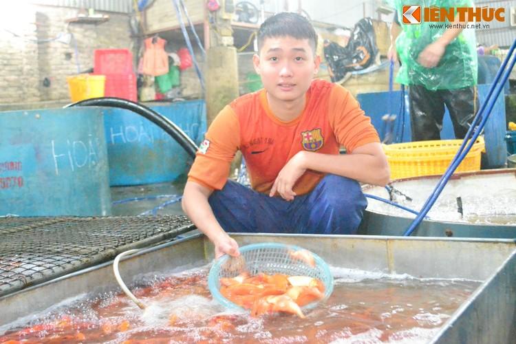 Cho ca lon nhat Ha Noi tap nap truoc ngay cung ong Cong ong Tao-Hinh-7