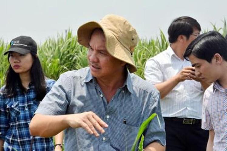 Nhung dai gia gian di nhat Viet Nam-Hinh-10