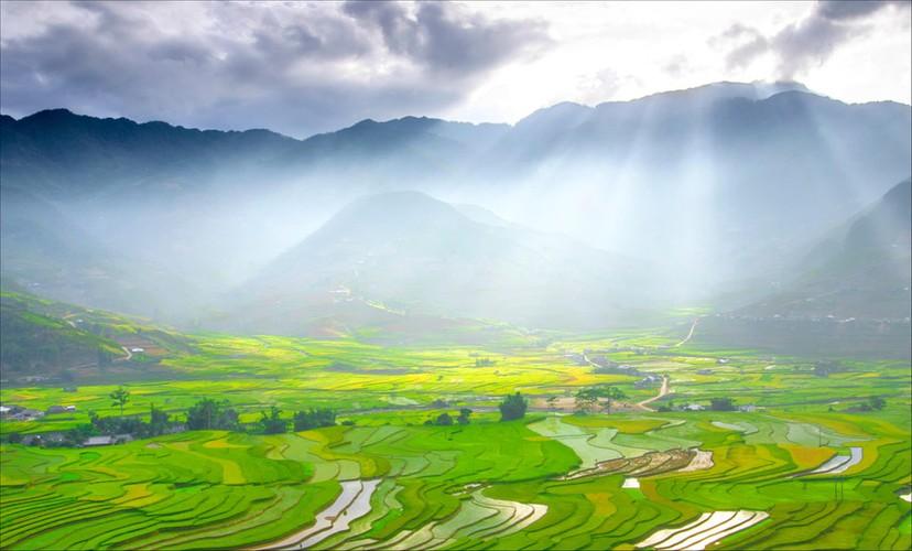 Tuyet dep bo anh Tay Bac mua lua chin ruc ro sac vang-Hinh-5
