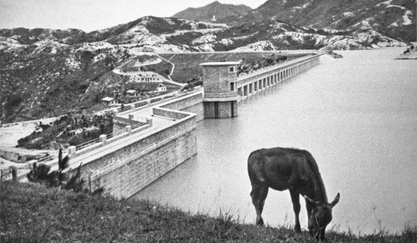 Anh hiem ve Hong Kong thap nien 1950 qua ong kinh nha tai phiet-Hinh-7