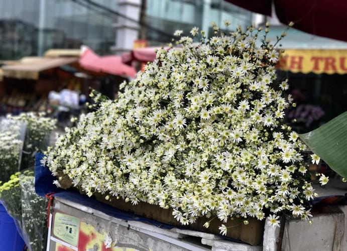 Mua cuc hoa mi: Chi em phat cuong, dan Nhat Tan mung tham-Hinh-12