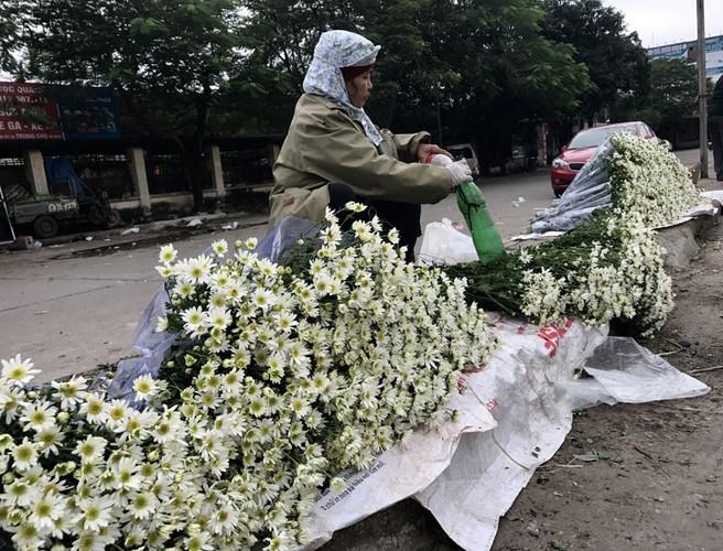 Mua cuc hoa mi: Chi em phat cuong, dan Nhat Tan mung tham-Hinh-14
