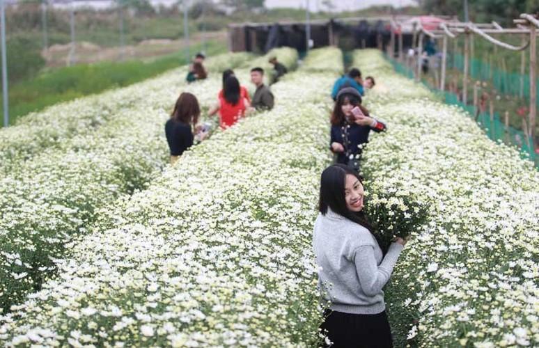 Mua cuc hoa mi: Chi em phat cuong, dan Nhat Tan mung tham-Hinh-17