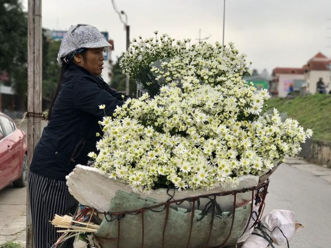 Mua cuc hoa mi: Chi em phat cuong, dan Nhat Tan mung tham-Hinh-9