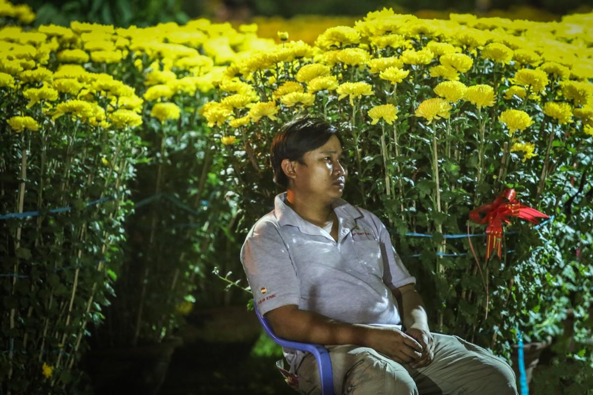 Tieu thuong dung leu giua cong vien, thuc trang dem canh hoa Tet-Hinh-13