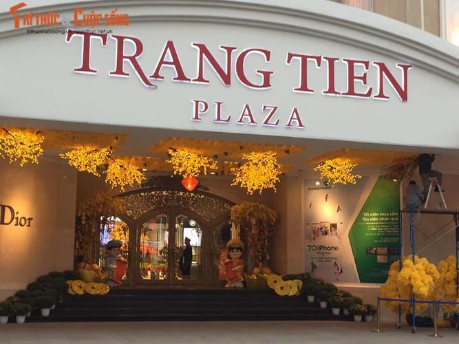 TTTM Ha Noi trang hoang ruc ro don Tet Dinh Dau-Hinh-7