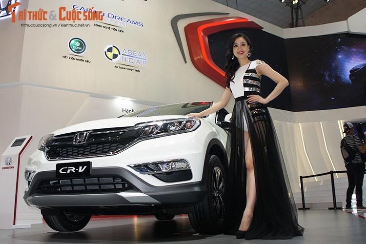 Chan dai Viet do dang xe hoi
