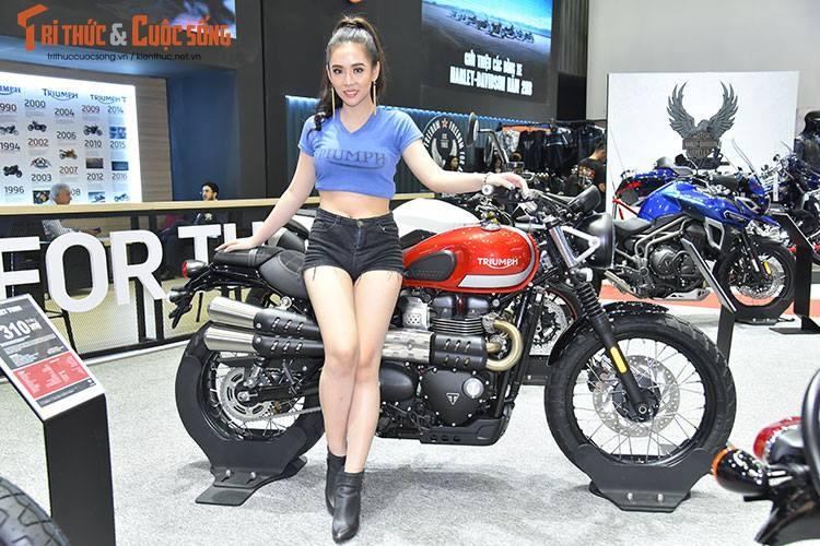"""Soi"" dan moto Triumph moi, gia tu 310 trieu tai VN-Hinh-4"