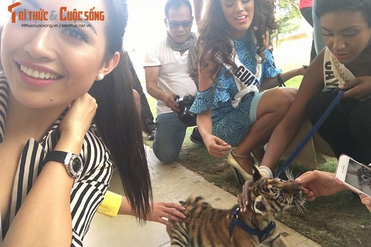 Le Hang tu tin trinh dien thoi trang tai Miss Universe 2016-Hinh-8