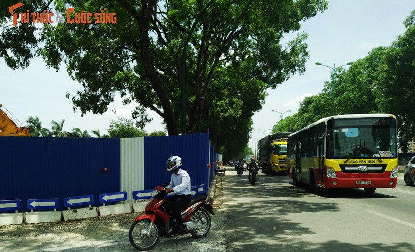 Ngam hang cay xanh muot tren duong Pham Van Dong truoc khi chat ha-Hinh-11