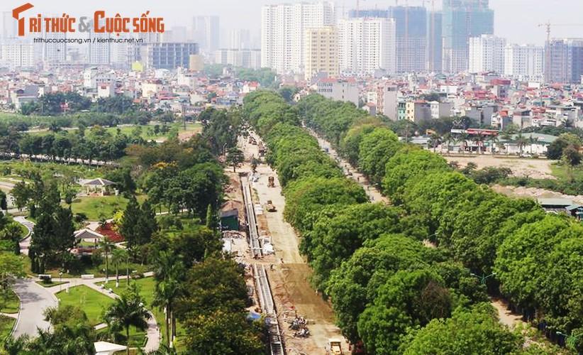 Ngam hang cay xanh muot tren duong Pham Van Dong truoc khi chat ha-Hinh-2