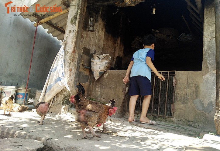 Anh: Canh khon kho cua nguoi bi danh oan vi nghi bat coc tre em o HN-Hinh-15