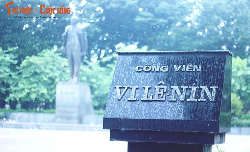 Ngan ngam canh dao xoi nham nho o cong vien Le Nin, Ha Noi-Hinh-2
