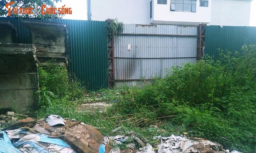 Ly do khong ngo khien BVDK Phuong Dong bi dinh chi xay dung-Hinh-11