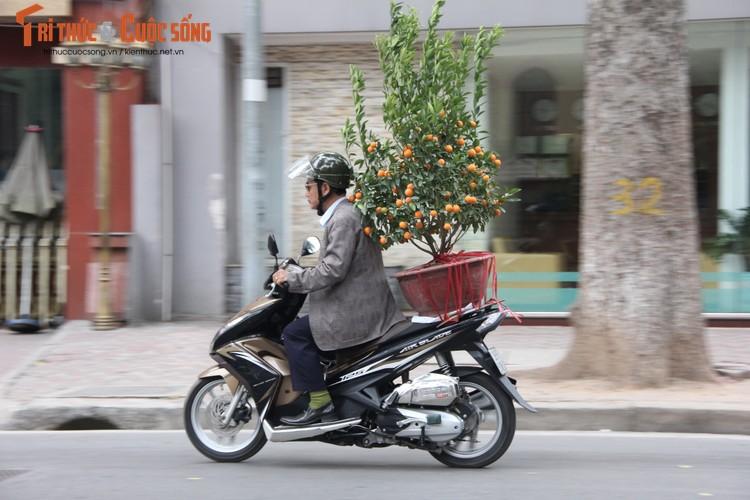 Chum anh: Khong khi chieu 30 Tet Dinh Dau o Ha Noi-Hinh-7