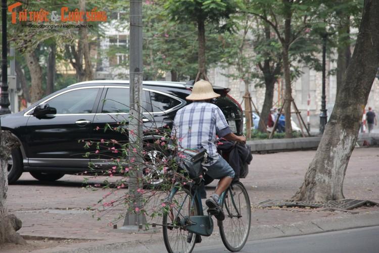 Chum anh: Khong khi chieu 30 Tet Dinh Dau o Ha Noi-Hinh-8
