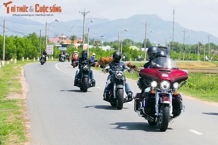 Gan 100 moto Harley-Davidson ra mat Clb HD - TP HCM-Hinh-10