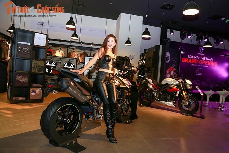 """Moto """"do lot"""" Triumph chinh hang gia tu 310 trieu tai VN-Hinh-6"""